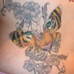 Women-butterfly-images-Design