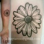 flower tattoo daisy outline plain daisy