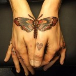 handy-butterfly-picture-for-female