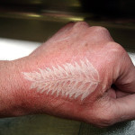 silver-fern-tattoo