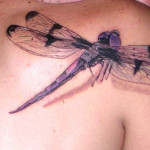 Amazing Creative Cool Dragonfly Tattoo Designs