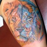 Arm Lion Tattoo Designs For Men