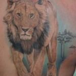 Awesome Back Lion Tattoo Designs For Men
