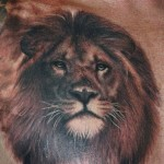 Chest Lion Tattoo Designs For Men