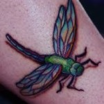 Colorful Dragonfly Creative Tattoo Designs