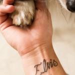 Elvis Name Tattoo Script  Designs