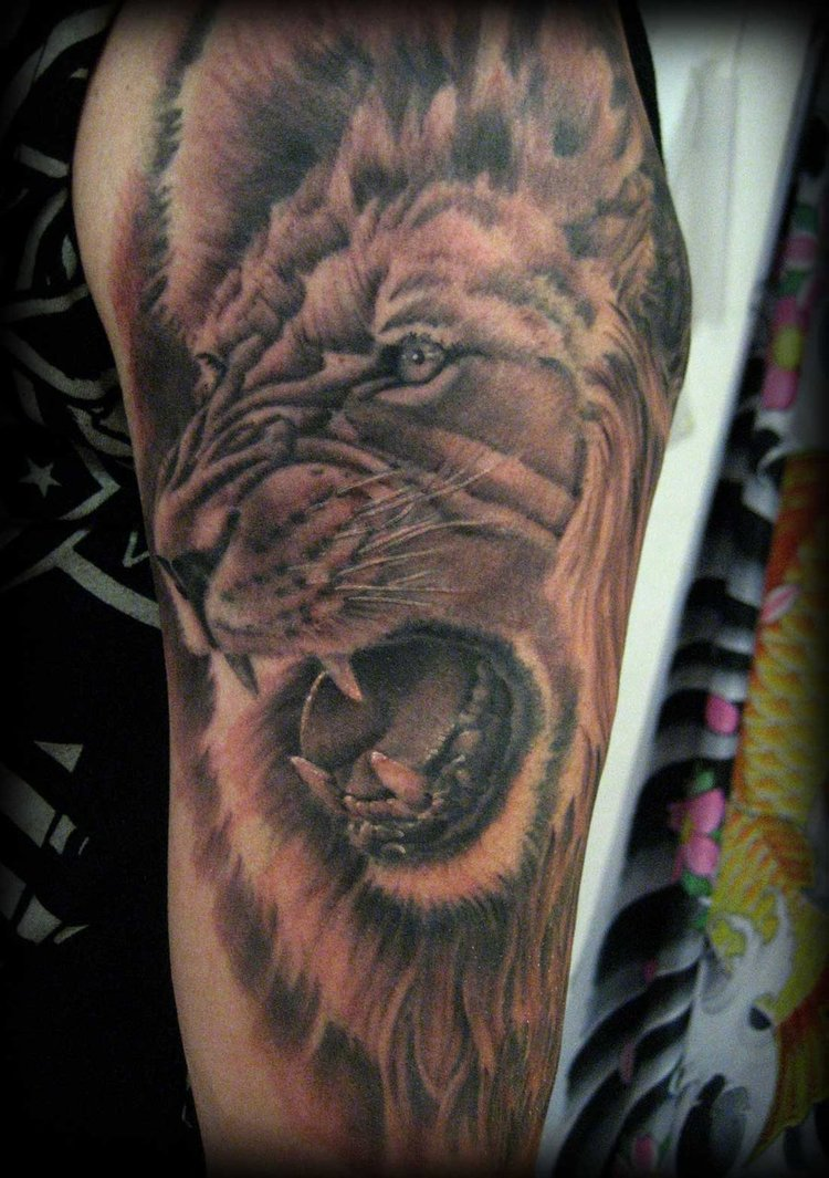 lion of judah tattoos for men1 tattoo love. Black Bedroom Furniture Sets. Home Design Ideas