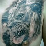 Lions_tattoo_8