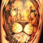 Lions_tattoo_93