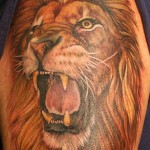 Neat Shoulder Lion Tattoo Designs For Men