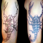 Scorpion Cover  Up Tattoo