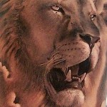 Shoulder Lion Tattoo Designs For Men